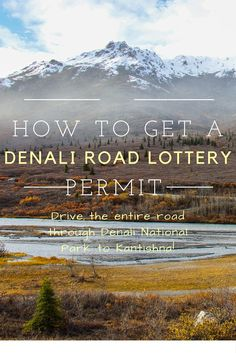 Instructions to help you get your hands on a Denali National Park Road Lottery Permit in Alaska
