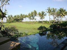 Villa vacation rental in Ubud from VRBO.com! #vacation #rental #travel #vrbo