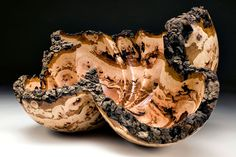 The Blakely Burl Tree Project- ART/ARTISTS - Mark Lindquist/Gary Stevens