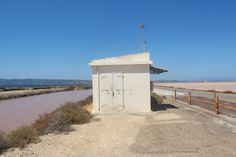Between the salt lakes in the south of Sardinia