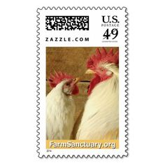Marigold & Beck the Chickens Stamps