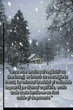 An Nou Fericit, True Words, Travel Quotes, Motto, Nostalgia, Advice, Snow, Education, Winter