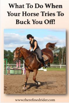 Bucking and rearing are dangerous horse habits that need to be stopped immediately. It's important to note right at the … Horse Riding Tips, Horse Tips, My Horse, Trail Riding, How To Ride A Horse, Horse Training, Training Tips, Equestrian Outfits, Equestrian Style