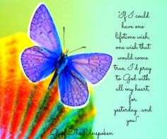 """""""If I could have one lifetime wish, a wish that would come true, I'd pray to God with all my heart, for yesterday. . . and you!"""""""