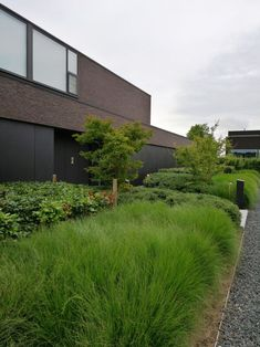 Landscaping For Your Location - How To Choose The Right Plants - House Garden Landscape Modern Villa Design, Modern Landscape Design, Modern Garden Design, Garden Landscape Design, Modern Landscaping, Contemporary Landscape, Garden Landscaping, Modern Driveway, Front Yard Plants