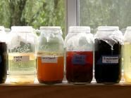 Vinegar making round up. Make your own everything!