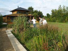 Jardin d'Assainissement Aquatiris