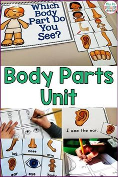 Help students receptively and expressively learn about their body and five senses. This set is jam packed with visuals and hands on tasks that our students need to learn the vocabulary and concepts. This resource is perfect for special education classrooms, life skills programs, students with autism and for speech therapists.