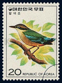 Corea 1976 - El Pita Ninfa