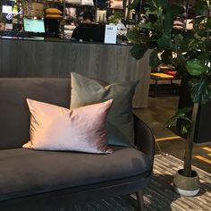 Two -Toned Velvet pillows available in Toronto designed by J Vine Studio. Textile Prints, Textile Design, Velvet Pillows, Throw Pillows, Designer Pillow, Vines, Toronto, Studio, Bed