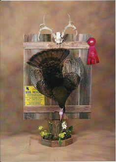 Add in some sawgrass or something more neutral. Hunting Crafts, Antler Crafts, Antler Art, Hunting Stuff, Taxidermy Decor, Taxidermy Display, Bird Taxidermy, Turkey Mounts, Turkey Hunting