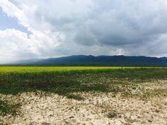 Qinghai Lake, Qinghai, China