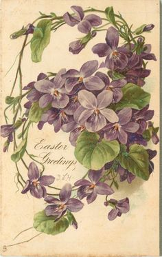 EASTER GREETINGS three open violets below greeting, middle violet sits on leaf with small bud, half open violet hangs from loop right