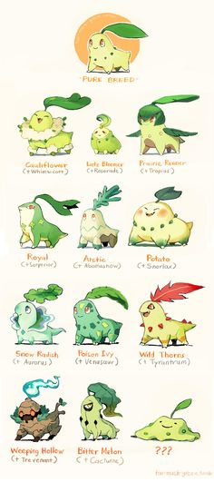 1. Chikorita Plant-Types by Too-Much-Green