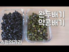 활용도 높은 완두배기 콩배기 만드는법 - YouTube
