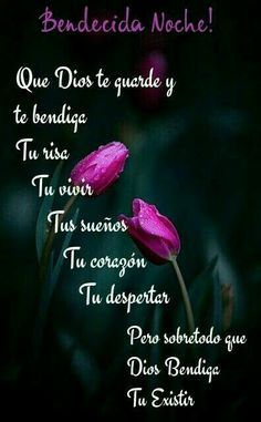 Buenas noches posted on prayer fb page sep 2017 Good Night Quotes, Sweet Cat, Betty Barclay, Frases Tumblr, Fb Page, Mood, Dating Quotes, Prayers, Funny Quotes