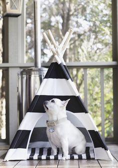 Teepee guard. Dog teepee by #pipolli #piggyandpolly #theobonaparte