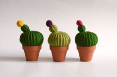 grand pointe cactus, monique monique tricot