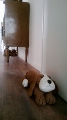 the only dog i can have is a door stops