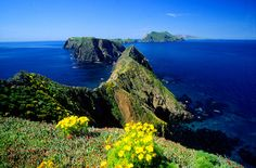 Want adventure in your girls weekend? How about camping on Anacapa Island, part of the Channel Islands National Park.  11 miles off the coast of Ventura, California.