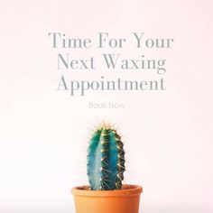 When is the last time you were in? Staying consistent is the key to finer hair and smoother skin! #waxstudio #dayton #ohio #waxing #esthetician #brazilianwaxing #eyebrowwaxing #lashlift #lashtint #browtint