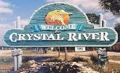 crystal river florida | Manatee Tours Crystal River Florida (FL)