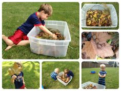Nature Walk to Collect Leaves - Then, Make Sensory Bin.