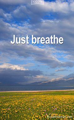 ♂ Just Breath Zen living green life style