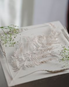 Dried Florals by Pampas Gal Obsessed with the details of fern leaves 😍 #fernleaves #driedflorals
