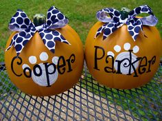 Puppy Pumpkins: Crispy Critter & Schell your dogs need these this year. Baby Girl can make one for Sam (her cat).