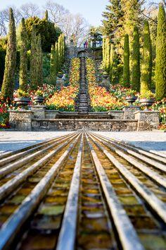 Die italienische Blumen-Wassertreppe auf der Blumeninsel Mainau
