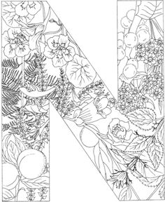 Letter N coloring page from English Alphabet with Plants category. Select from 20946 printable crafts of cartoons, nature, animals, Bible and many more.