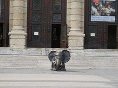 Museo Natural Viena