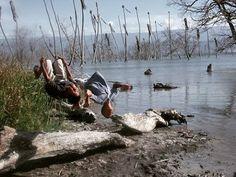 > Pese a las calamidades que ha causado la crecida del #LagoEnriquillo los niños no dudan en divertirse todo el tiempo posible.