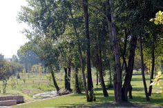 Parque da Cidade de Famalicão