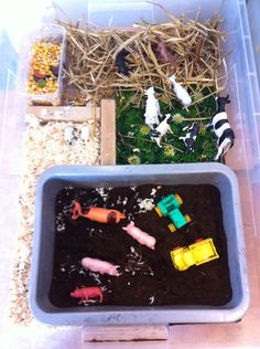 Different messy play components. would it be too much though and just end in the mess? Sensory Tubs, Sensory Activities, Sensory Play, Zoo Lights, Activity Box, Sensory Experience, Messy Play, School Themes, Creative Play