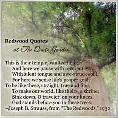 Quotations about redwood and sequoia trees updated and expanded, at The Quote Garden. www.quotegarden.com/redwoods.html