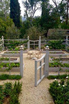 vegetable garden                                                                                                                                                                                 More