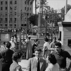 """A proud AUCian myself. ❤ """"The American University of Cairo in the 50's. Lovely time."""""""