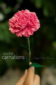 Crochet Flower Pattern of a Carnation by Happy Patty Crochet
