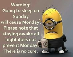 Warning Going To Sleep Sunday minions sunday sunday quotes happy sunday sunday humor sunday quote happy sunday quotes minions quotes Monday Morning Quotes, Happy Sunday Quotes, Happy Monday, It's Monday, Morning Memes, Blessed Sunday, Hello Monday, Happy Weekend, Funny Picture Quotes
