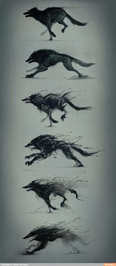 Hunger is a monster by Platine Images Wolf Sketch / Drawing Animation Illustration Inspiration Creature Design, Mythical Creatures, Dark Art, Amazing Art, Fantasy Art, Fantasy Wolf, Dark Fantasy, Art Drawings, Wolf Drawings