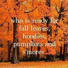 Ready for fall leaves, hoodies, s'mores and pumpkins. Live Laugh Love