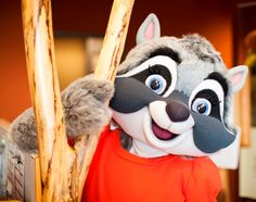 e061dabba 47 Best Great Wolf Kids images in 2018   Great wolf lodge, Wolf kids ...
