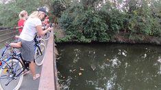 Colors of Bangkok 20200112 Jannie - Cycling in Bangkok - Radfahren in Ba...