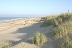 Strand-Texel.