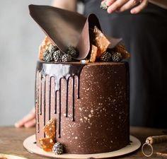 ideas birthday cake decorating ideas for men desserts Chocolate Drip Cake, Chocolate Desserts, Chocolate Frosting, Cupcakes, Cupcake Cakes, Gateaux Cake, Candy Cakes, Cake Decorating Techniques, Decorating Ideas