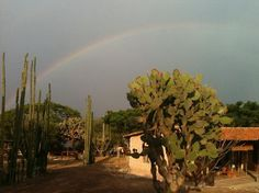Horseback Mexico  Rancho Pitaya, Oaxaca.