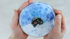 Kiva ja kaunis talviaskartelu lasten kanssa! Uniikki tee-se-itse-lumisadeympyrä syntyy raejuustopurkin kannesta, suolamaalauksesta, lapsen omasta valokuvasta ja mm. hitusesta ruokasuolaa. Snow Globes, Decor, Decoration, Decorating, Deco