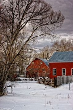 Barns...I think they paint them this bright red so they are visible in a snow…